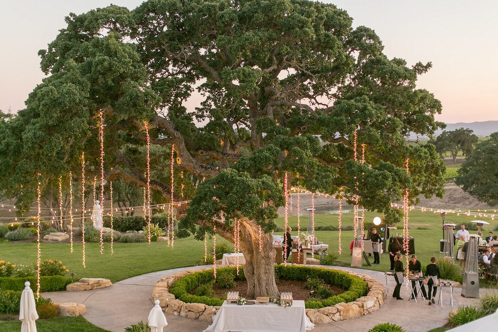 pro con outdoor wedding